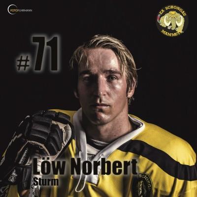 Löw Norbert