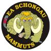 Wieder im Rennen – 6 Punkte für die Mammuts am Wochenende!