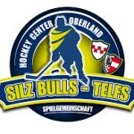 Silzbulls Logo