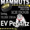 Mammuts begrüßen um 17:00 Uhr die EV Pegnitz ICE DOGS