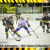 Klare Verhältnisse gegen den alten Rivalen  – eindrucksvoller Sieg der EA Schongau gegen Kempten!